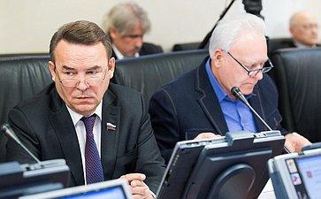 Р. Зинуров назаседании Комитета СФ помеждународным делам