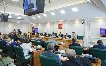Парламентские слушания вСФ, посвященные обсуждению Основ государственной культурной политики