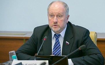 С. Рыбаков Заседание Комитета СФ понауке образованию икультуре