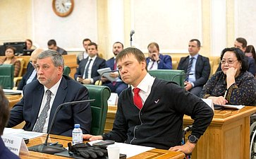 Заседание Совета поделам инвалидов при Совете Федерации Федерального Собрания Российской Федерации натему «Оходе реализации стратегии развития производства промышленной продукции реабилитационной направленности»