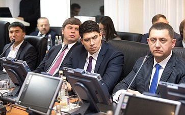 ВСовете Федерации прошла встреча счленами делегации VIII Международных парламентских игр