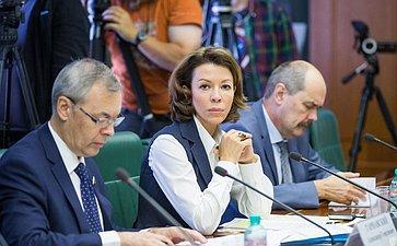 Семинар-совещание «Оправовой иполитико-дипломатической институализации перечня зарубежных неправительственных организаций (патриотического «стоп-листа»» вСовете Федерации