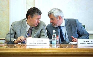 Е. Бушмин иП. Зенькович