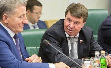 Заседание Комиссии по мониторингу ситуации на Украине при Комитете Совета Федерации Цеков