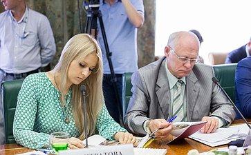 В Совете Федерации состоялось заседание Комитета общественной поддержки жителей Юго-Востока Украины-12