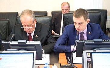 Сергей Митин иДмитрий Шатохин