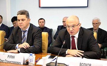 Олег Рурин иДмитрий Волков