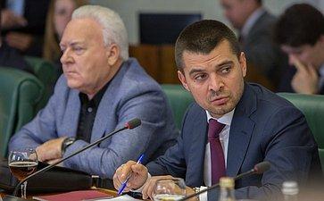 С. Ммамедов на заседании Комитета общественной поддержки жителей Юго-Востока Украины