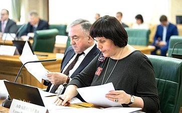 Е. Афанасьева назаседании Комитета Совета Федерации поконституционному законодательству игосударственному строительству