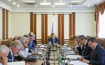 Заседание комитета СФ помеждународной политике