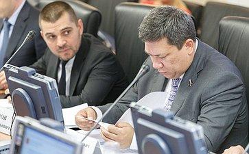 Заседание Комитета Совета Федерации по Регламенту и организации парламентской деятельности Полетаев