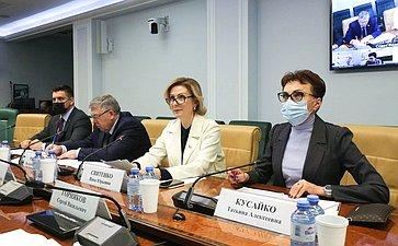 ВКомитете СФ посоциальной политике обсудили реализацию национальных проектов «Демография» и«Здравоохранение»
