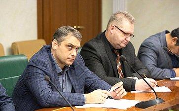 Заседание Временной комиссии СФ поразвитию информационного общества