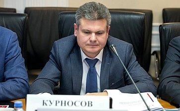 Михаил Курносов