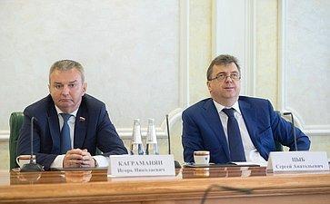 И. Каграманян иС. Цыб