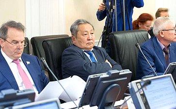 А. Тулохонов назаседании Комитета помеждународным делам