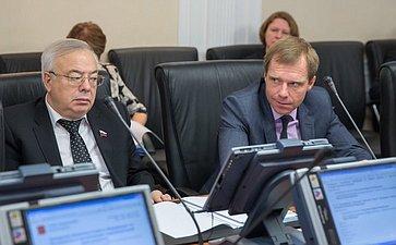 В. Бочков Заседание Комитета СФ по Регламенту и организации парламентской деятельности
