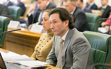 М. Кавджарадзе назаседании Комитета Совета Федерации поконституционному законодательству игосударственному строительству