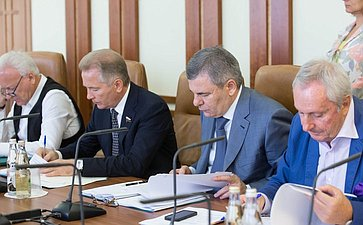 Заседание комитета по международной политике-8