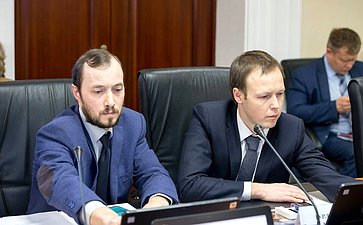 Расширенное заседание Комитета СФ помеждународным делам