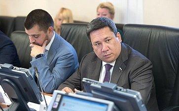 С. Мамедов иВ. Полетаев