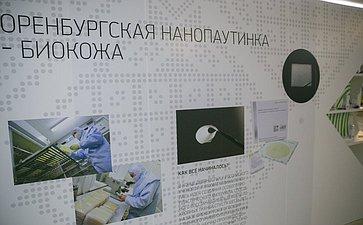 Зкспозиция в Совете Федерации, посвященная достижениям и перспективам развития Оренбургской области