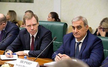 Совещание Комитета СФ поэкономической политике натему «Оперспективах развития российского судостроения»
