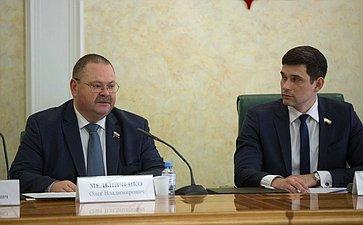 «Круглый стол» врамках совместного заседания Палаты молодых законодателей при СФ иМолодежной палаты при ГД