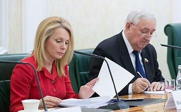 Заседание Совета поместному самоуправлению при верхней палате парламента