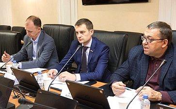Рабочее совещание Комитета СФ побюджету ифинансовым рынкам