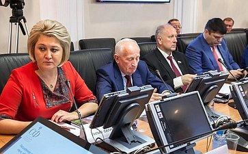 Заседание Комитета СФ понауке, образованию икультуре натему «Комплексный подход вразвитии малых исторических городов Тульской области»