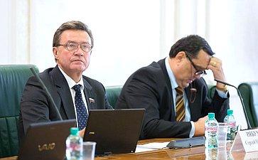 Заседание Комитета СФ побюджету ифинансовым рынкам. С. Рябухин