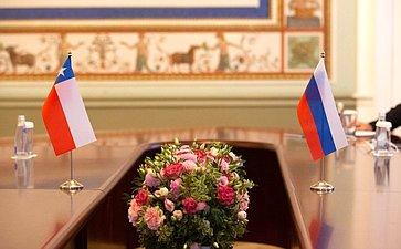 Валентина Матвиенко провела встречу сПредседателем Сената Национального Конгресса Республики Чили Хименой Сесилией Ринкон Гонсалес
