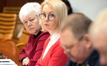 Заседание Временной комиссии позащите государственного суверенитета инедопущению вмешательства вовнутренние дела РФ