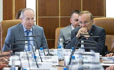 Заседание Комитета СФ пофедеративному устройству, региональной политике, местному самоуправлению иделам Севера сучастием представителей власти Псковской области