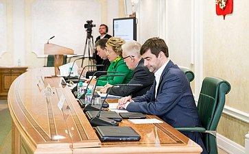 Заседание Оргкомитета VII Невского экологического конгресса