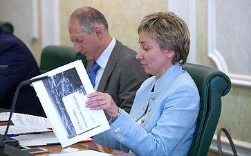 Заседание Межрегионального банковского совета при Совете Федерации