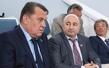 17-06 Комиссия СФ по мониторингу ситуации на Украине 11