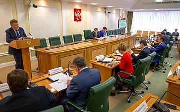 Расширенное заседание Комитета СФ побюджету ифинансовым рынкам