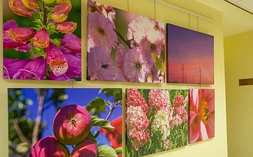Открытие вСовете Федерации фотовыставки «Краски Удмуртии»