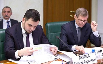 Совещание вСФ, посвященное реализации принятых врамках Дней субъектов Российской Федерации постановлений палаты