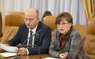 Бокова и Цепкин Заседание временной Комиссии СФ по развитию информационного общества