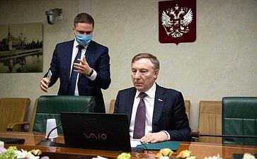 Встреча сенаторов вформате видеоконференции счленами Комитета помеждународным делам Палаты молодых законодателей