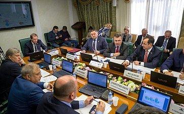 Расширенное заседание Комитета СФ поэкономической политике