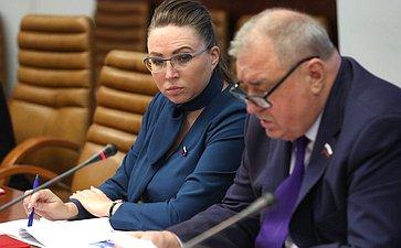 «Круглый стол» Комитета СФ поэкономической политике совместно сКомитетом СФ посоциальной политике