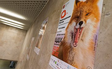 Церемония открытия III Общероссийского фестиваля природы «Первозданная Россия»