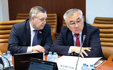 Александр Ракитин иБаир Жамсуев