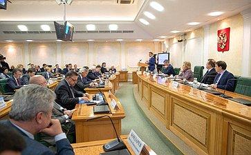 Встреча членов СФ сМинистром цифрового развития, связи имассовых коммуникаций РФ Константином Носковым