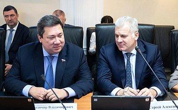 Владимир Полетаев иСергей Мартынов