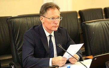 Парламентские слушания натему «Окоммерциализации космической деятельности: проблемы иперспективы» вформате видеоконференции